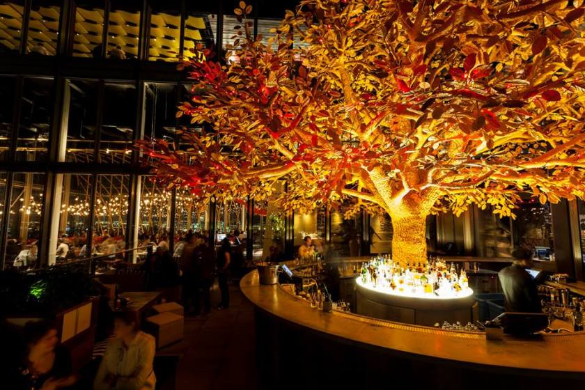 Sushisamba tree terrace watch the World Cup